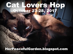 2017 Cat Lovers Hop Badge