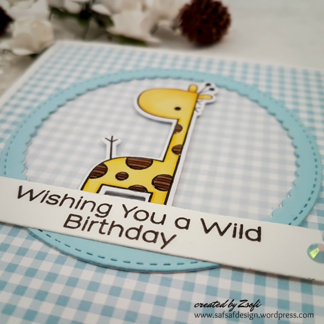 MFT_wild_birthday_03