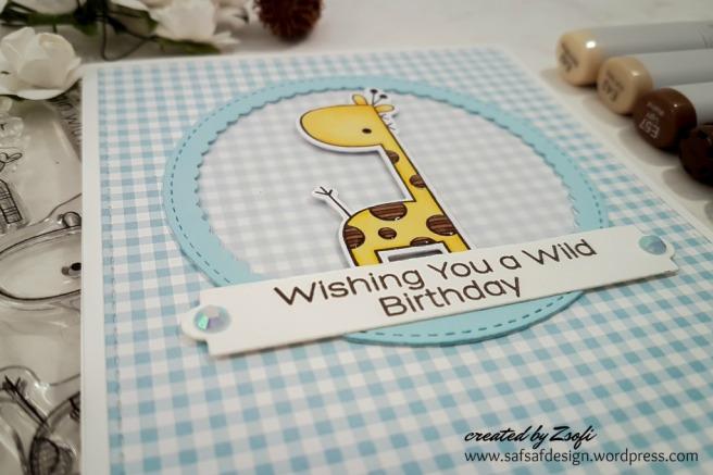 MFT_wild_birthday_04