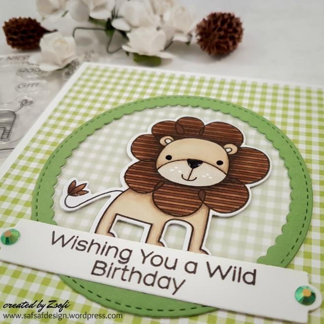 MFT_wild_birthday_05