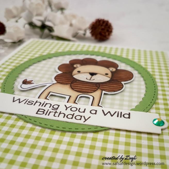 MFT_wild_birthday_07