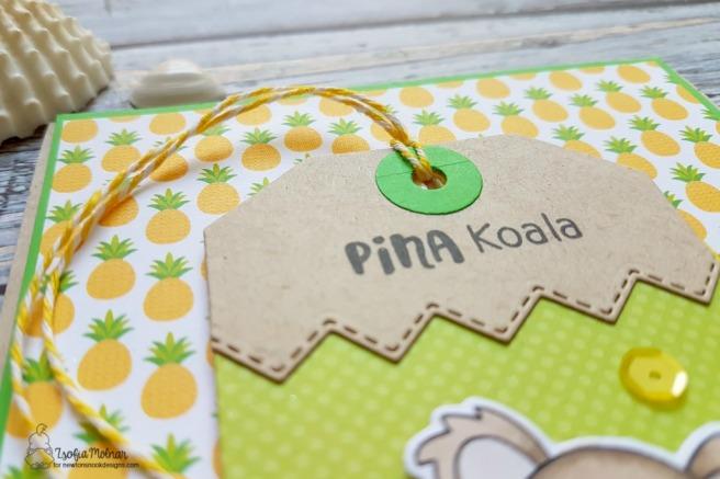 pina_koala_zsm_02
