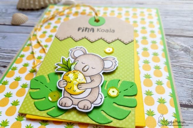 pina_koala_zsm_03